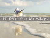 The Day I Got My Wings…